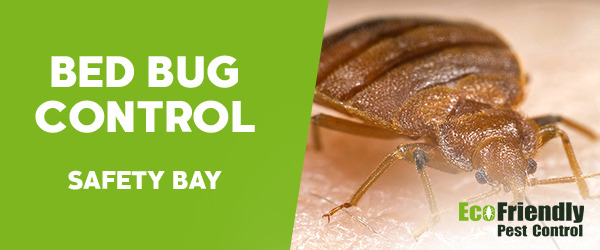 Bed Bug Control Safety Bay