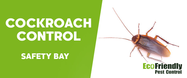 Cockroach Control Safety Bay