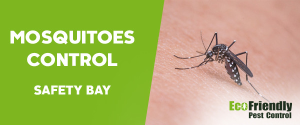 Mosquitoes Control Safety Bay