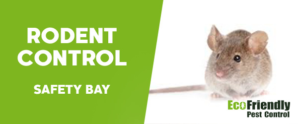 Rodent Treatment Safety Bay