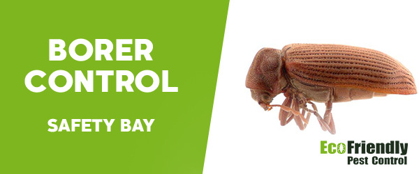 Borer Control Safety Bay