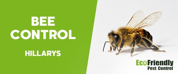Bee Control Hillarys