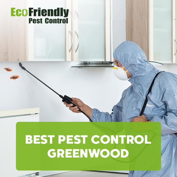Best Pest Control Greenwood