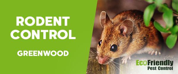 Rodent Treatment Greenwood