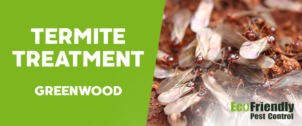 Termite Control Greenwood