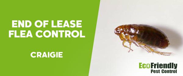 End of Lease Flea Control Craigie