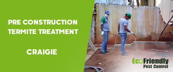 Pre Construction Termite Treatment Craigie