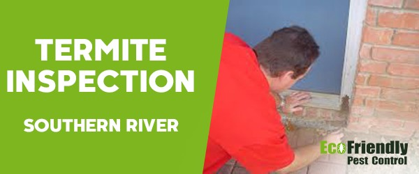 Termite Inspection Southern River