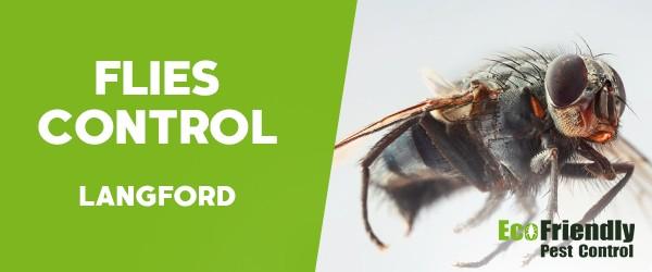 Flies Control  Langford
