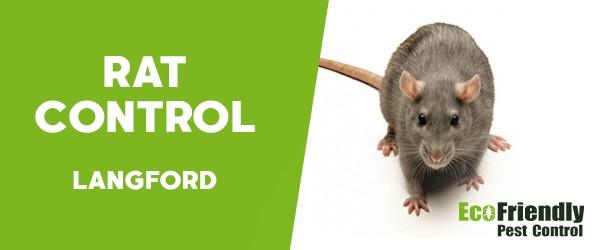 Rat Pest Control  Langford