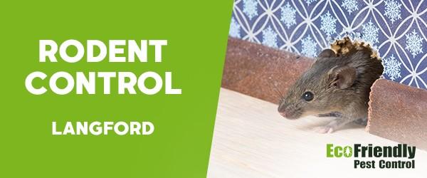 Rodent Treatment  Langford