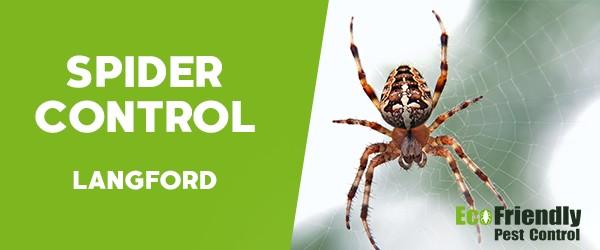 Spider Control  Langford