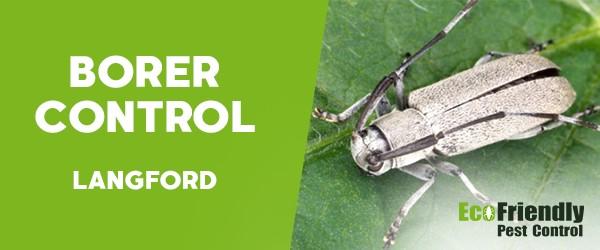 Borer Control  Langford