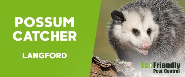 Possum Catcher  Langford