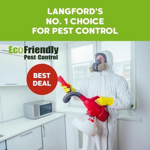 Pest Control  Langford