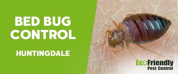 Bed Bug Control  Huntingdale