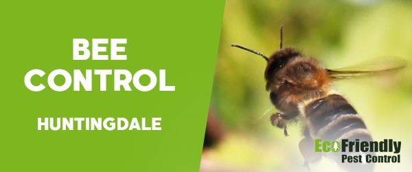 Bee Control  Huntingdale