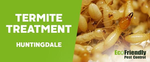 Termite Control  Huntingdale