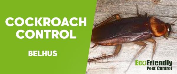 Cockroach Control  Belhus