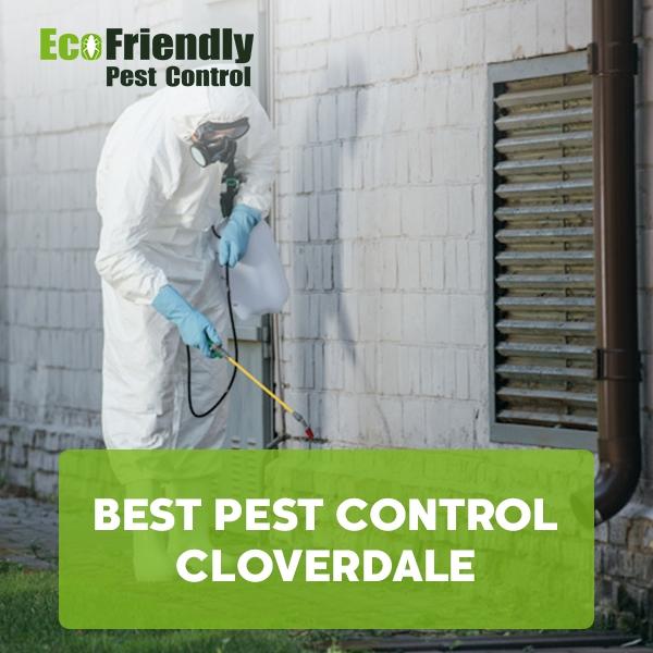 Best Pest Control  Cloverdale