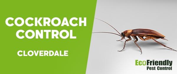 Cockroach Control  Cloverdale