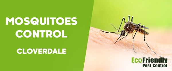 Mosquitoes Control  Cloverdale