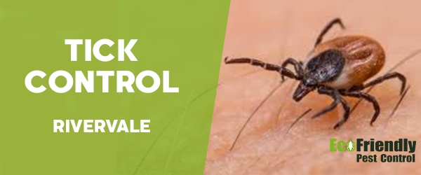 Pest Control Rivervale