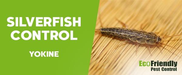 Silverfish Control  Yokine