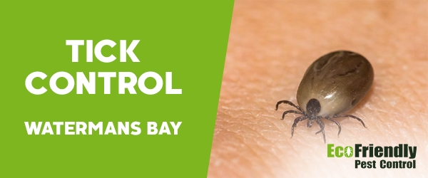 Ticks Control  Watermans Bay