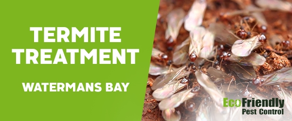 Termite Control  Watermans Bay