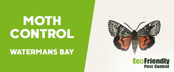 Moth Control  Watermans Bay