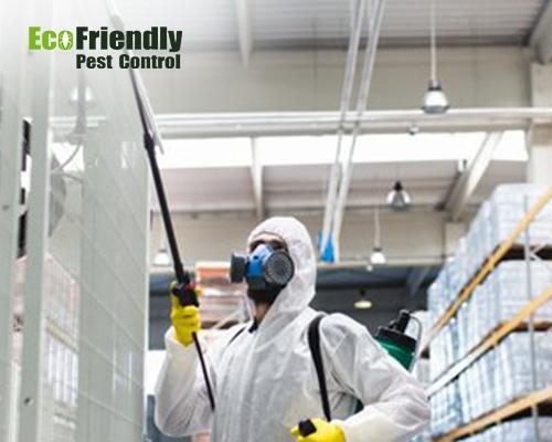 Pest Control  Cannington