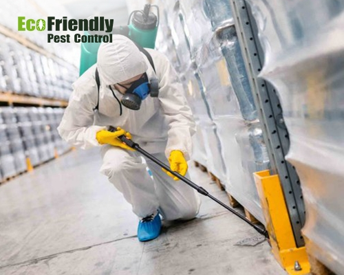 Pest Control  Ferndale