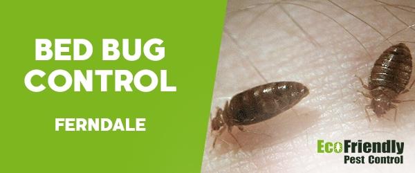 Bed Bug Control  Ferndale