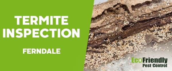 Termite Inspection  Ferndale