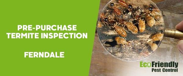 Pre-purchase Termite Inspection  Ferndale