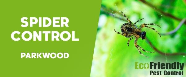 Spider Control  Parkwood