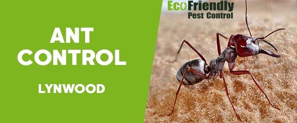 Ant Control Lynwood