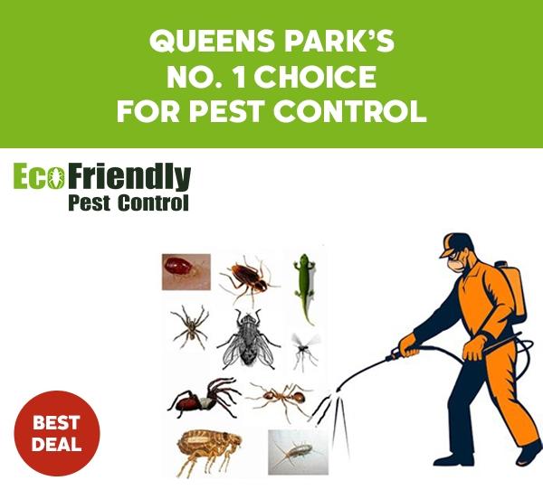 Pest Control  Queens Park