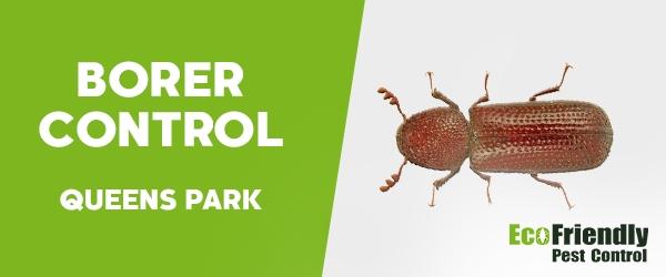 Borer Control  Queens Park