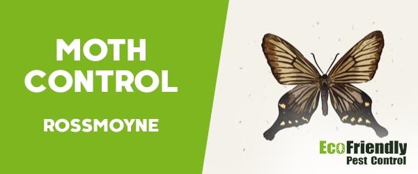 Moth Control  Rossmoyne