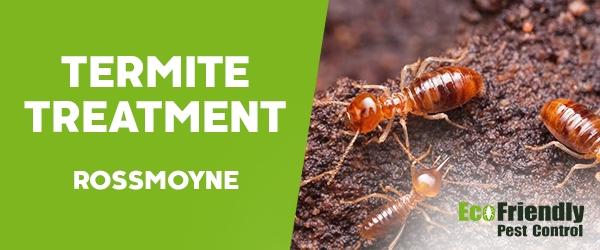 Termite Control  Rossmoyne