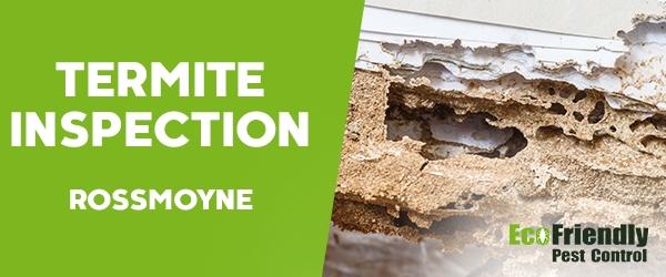 Termite Inspection  Rossmoyne