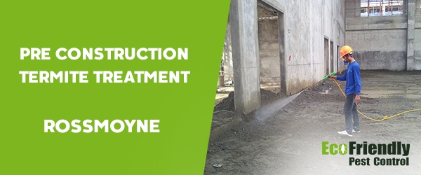 Pre Construction Termite Treatment  Rossmoyne