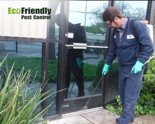 Pest Control Kewdale