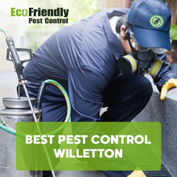 Best Pest Control Willetton