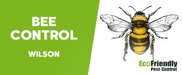 Bee Control  Wilson