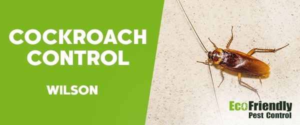 Cockroach Control  Wilson