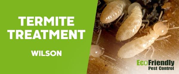 Termite Control  Wilson