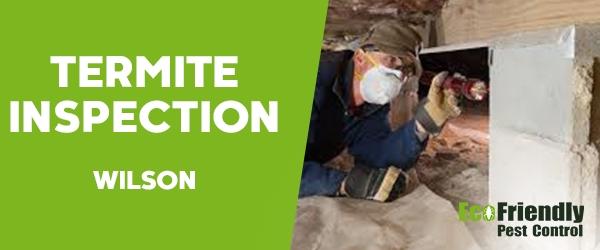 Termite Inspection  Wilson